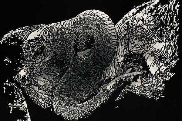 Sculpture-bois-decoupe-passion-elephant-thierry-kolb